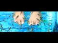 Rybičky Garra Rufa, manikúra, pedikúra, koupel s rybičkami Šumperk, Zábřeh