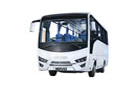 Prodej nejlevn�j��ch z�jezdov�ch, p��m�stk�ch  autobus� a minibus� v �esk� republice