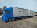 Verkauf, Aufkauf, Import von Lastkraftwagen, Gebrauchtwagen Vysocina, die Tschechische Republik