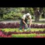 Realizace zahrad a �dr�ba zelen�, Praha