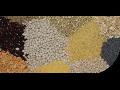 Balírna potravin, balení sypkých potravin