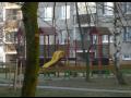 dětské hřiště Moravská Třebová