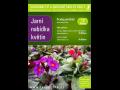 Jarní květiny prodej - Zahradnictví a okrasné školky Kbely