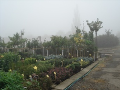 Zahradnictví Brno venkov