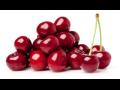 Prodej třešní a višní - velký výběr ovocných stromů a odrůd třešní a višní