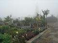 Obchod poradenství zahradnictví Brno venkov