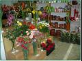Rozvoz květin Kvasice, Hulín, Napajedla, Spytihněv, Halenkovice
