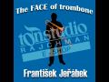 Grafické studio, výroba CD a DVD, hudební vydavatelství Dolní Bojanovice