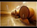 Vinařství, degustace vín Velké Bílovice