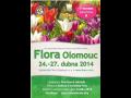 Nejstar�� �esk� kv�tinov� v�stava, Jarn� v�stava Flora Olomouc