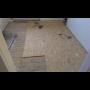 Odborn� pokl�dka koberc�, mont� podlahovin, vyrovn�n� podlah