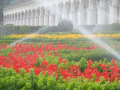 automatické zavlažovací systémy  - péče o okrasné zahrady