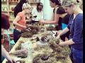 Výtvarné semestrální kurzy pro děti i dospělé Zlín