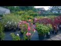 Zahradnictví Opava