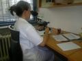 Laborato� biopsie, cytologie, cervikovagin�ln� cytologie Ostrava