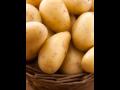 P�stov�n� brambor a okurek naklada�ek Znojemsko