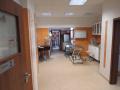 Očkování zvířat,čipování zvířat,kastrace psů,sterilizace koček Liberec