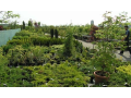 Zahradn� centrum, okrasn� d�eviny, hnojiva, Turnov