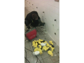 �i�t�n� kanalizace - havarijn� slu�ba �esk� Bud�jovice