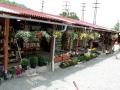 Zahradn� centrum Vset�n - Pot��ky Marie Machalov�