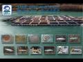 Bosnien und Herzegowina; Fische