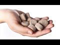 Speciální hnojiva s vysokým obsahem živin Znojmo