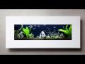 Mořské akvárium, akvária na míru, živý obraz Uherské Hradiště, Zlín