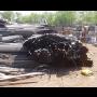 Výkup kovového šrotu a litinového odpadu  - s naložením a dopravou