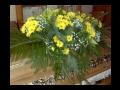 Pohřebnictví, pohřby, pohřební služba Miroslav