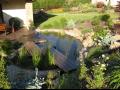 zazimování zahrad