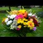 květinové vazby Brno