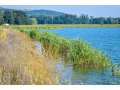 Projekty pro získání dotace z opžp osa 4 - revitalizace vodních toků