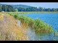 Projekty pro z�sk�n� dotace z op�p osa6-revitalizace vodn�ch tok�