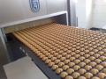 Výrobní linky na výrobu perníku a sušenek