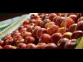 Kvalitní ovoce pro český trh