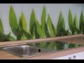 Navrhněte si svůj Skleněný obklad do kuchyně sami, Obkladová skla s grafikou Liberec