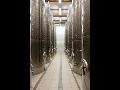 Vinařství - prodej vína, výroba bílých a červených vín, pěstování vinné révy