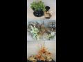 Suché a umělé květiny Zlín