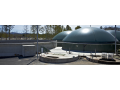 Bioplynov� stanice