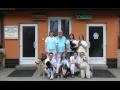 Veterin�rn� klinika zajist� vy�et�en� i sanitku - Plze�