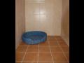 Hotel pro psy, kočky a jiná zvířata Opava