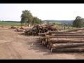 Dřevovýroba, výroba řeziva-pořez kulatiny, impregnace, řezání dřeva
