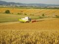 Středisko agromechanizace ZDV Fryšták-postřiky, sklizeň, osevy