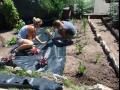 N�vrhy zahrad i jejich realizace pro Kol�n i okol�