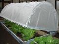 Pařeniště zelenině na jaře pomůže - Litomyšl