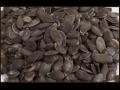 Posypový materiál pro cukráře i pekaře - Chrudim