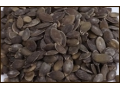 TRIAS CR nab�z� posypov� materi�l pro cukr��e i peka�e