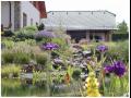 Projektov�n� zahrad a realizace zahrad na m�ru - T�inec
