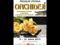 Výstavu orchidejí a dalších cizokrajných rostlin České Budějovice