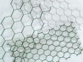Oborové a šesťhranné pletivá, oplotenie, výroba a montáž poplastovaného, pozinkovaného pletiva